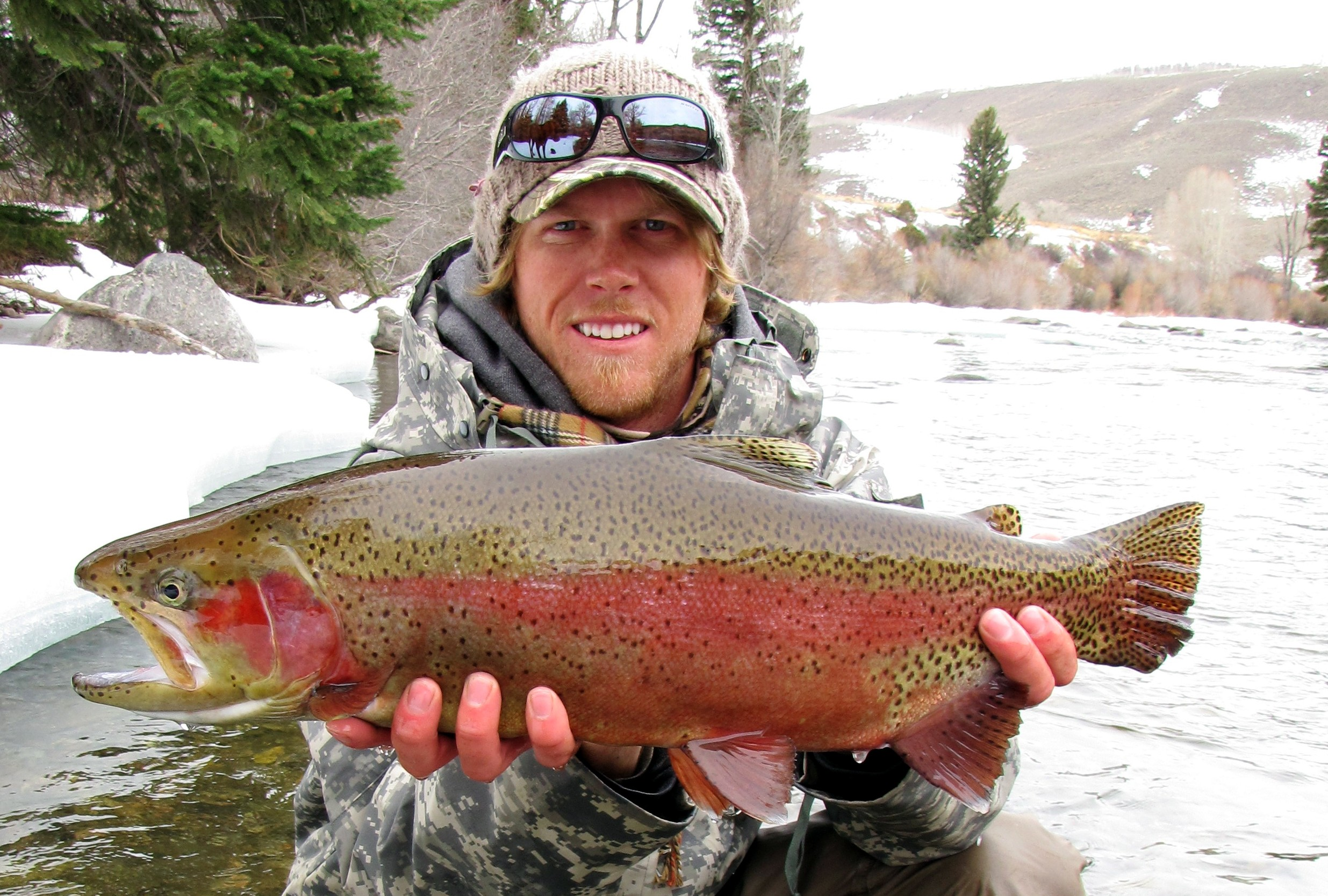 Rainbow trout win first cheeky fly fishing march madness for Cheeky fly fishing