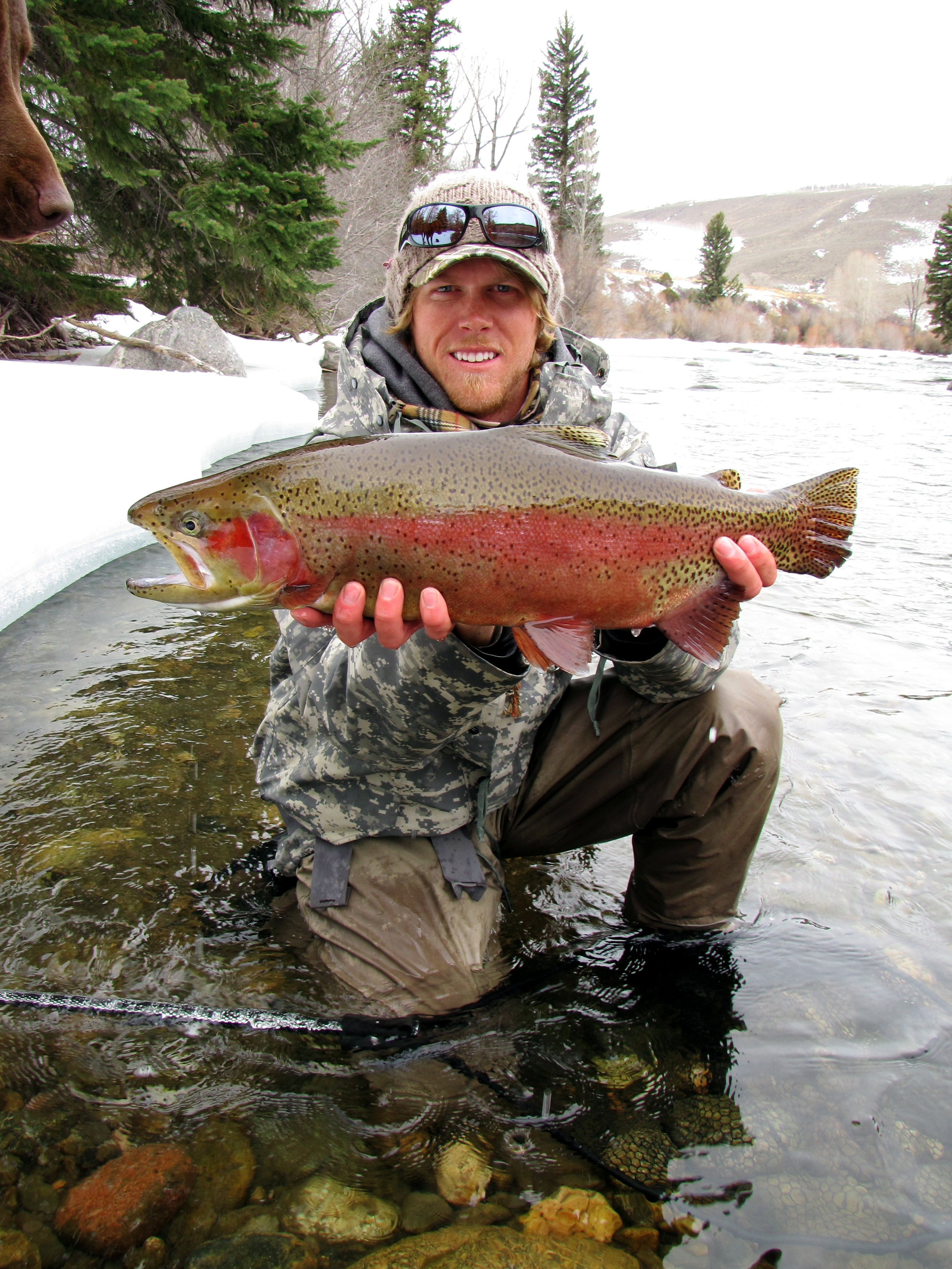Contest tasty for Cheeky fly fishing