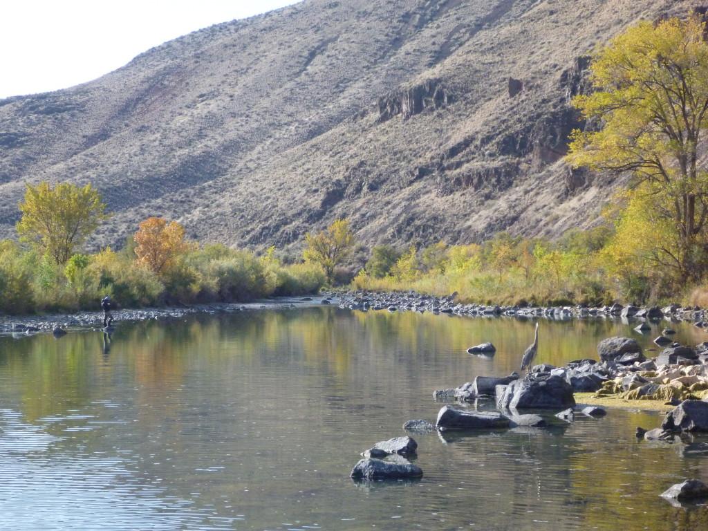 The Owyhee River
