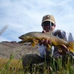 An Owyhee Brown Trout